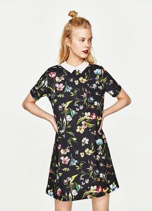 Платье с белым воротником в цветочный принт