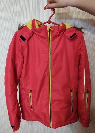 Арбузная куртка (термокуртка)