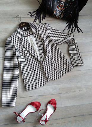 Знижки, подарунки! 💖 трикотажний смугастий піджак, люкс якість2
