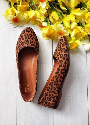 Балетки шкіряні 🐆🐆🐆 с принтом леопард