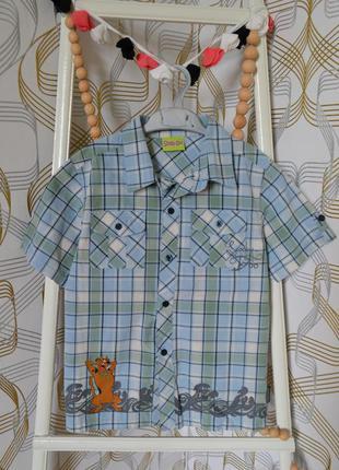 Рубашка с принтом скубиду на мальчика 9-10 лет/134-140 см