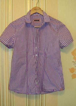 Рубашка marc o polo оригинал