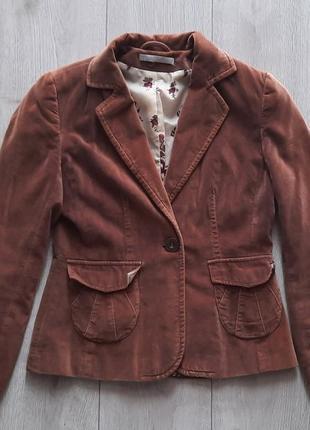 Стильные велюровые пиджаки