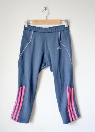Спортивные штани adidas