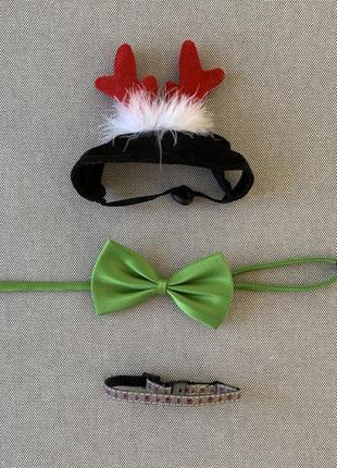 Бабочка, рога оленя и ошейник для кота собаки