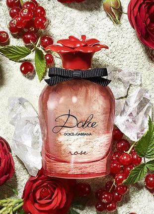 Dolce rose dolce&gabbana