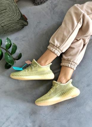Кроссовки adidas yeezy boost 350 «antlia»