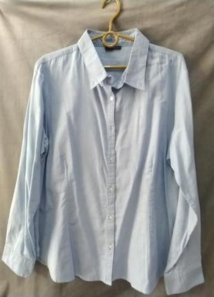 Блакитна бавовняна жіноча сорочка, євр.р.48