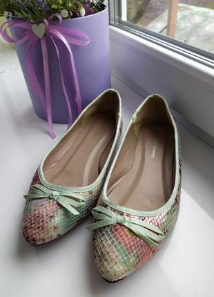 Балетки , туфлі