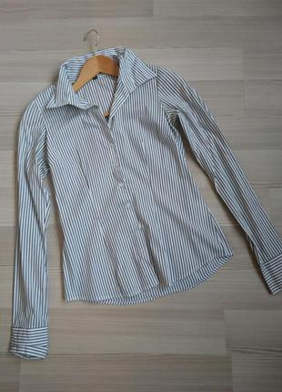 Блуза рубашка amisu xs