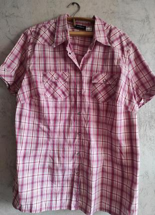 Летняя рубашка хлопок большой размер