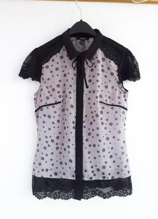 Блуза arefeva в горошек в родной упаковке блузка arefeva сиреневая блуза в горох