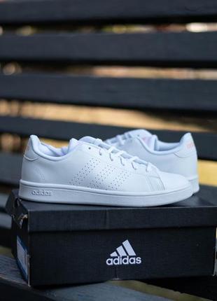 Кроссовки кеды женские adidas advantage base ee7510 оригинал америка