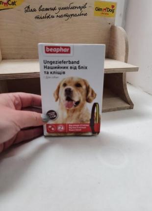 Ошейник для собак