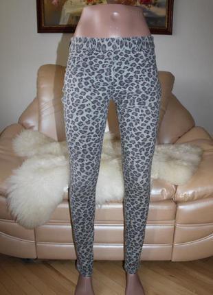 Шикарные серые джинсы леггинсы лео, размер s m