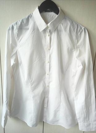 Белая рубашка massimo dutti