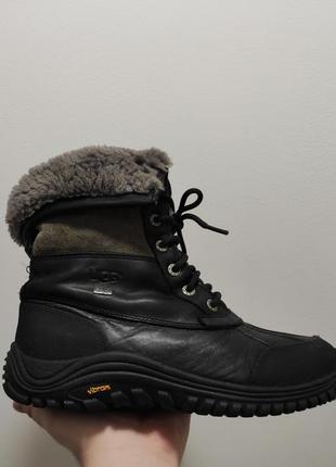 Фирменные ботинки ugg