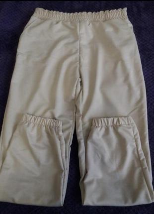 Спортивные штаны брюки джогерры