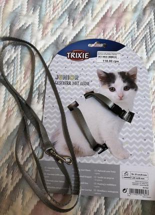 Поводок +шлея для котят trixie