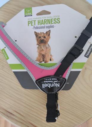 Новая шлейка для маленьких и средних пород собак и кошек до 6 кг numbell p.r.c.