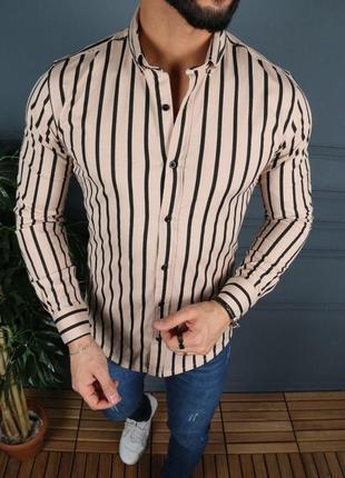 Мужская рубашка бежевая в черную полоску