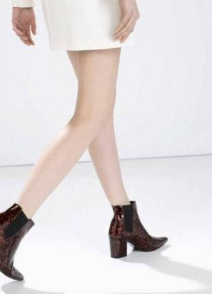 Леопардовые ботинки zara