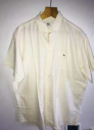 Брендовая рубашка lacoste р 43 наш 52-54-56