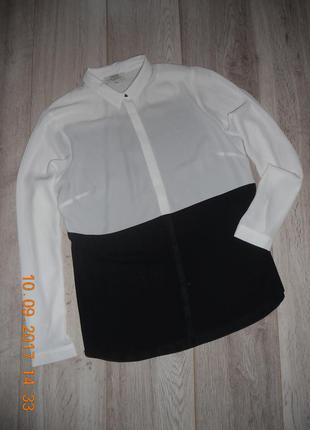 Рубашка блуза papaya 14p