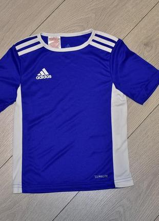Спортивная футболка adidas оригинал оригинальная футболка adidas на 5-6 лет