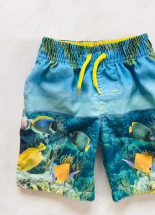 Rebel стильные шорты-плавки  на мальчика  1,5-2 года