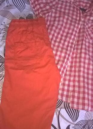 Отличные шорты яркого морковного цвета