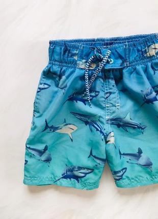 Rebel стильные шорты-плавки  на мальчика   4-5 лет