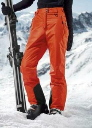 Термо штаны лыжные crivit sports, размер 52 евро