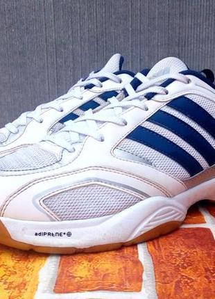 Кроссовки от adidas big roar