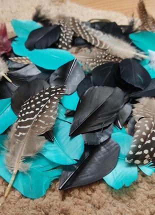 Перья птичьи для декора