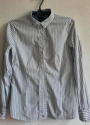 Рубашка в полоску marc o polo