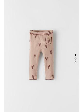 Лосіни, штани