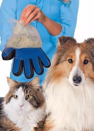 Перчатка для вычесывания шерсти домашних любимцев true touch, для домашних собак котов
