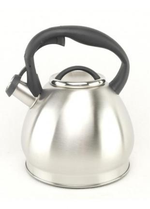 Чайник a-plus econom со свистком 2.0 л