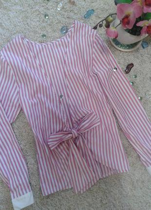 Стильная блуза с красивой спиной бант