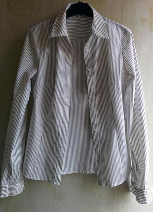 Классическая рубашка в полоску oodji, приталенная