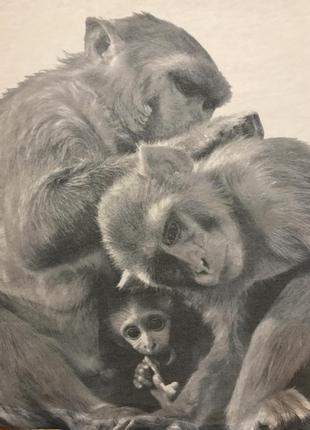Очень красивая и стильная брендовая маечка с обезьянками.