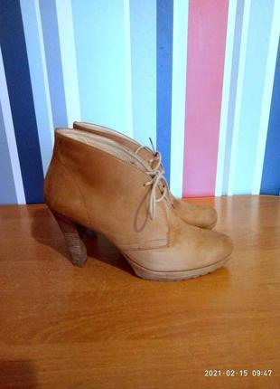 Женские кожаные демисезонные полусапожки ботинки бренд paul green