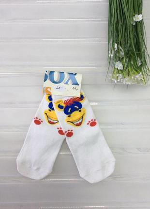 Якісні хлопкові носки
