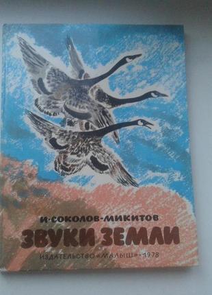 Книга детская. природа. большой формат. купить книгу детскую. ссср.