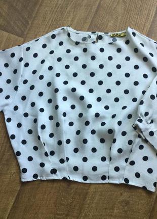 Блуза-кофточка в горох olko