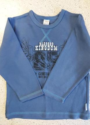 Реглан,кофта,футболка с длинным  рукавом