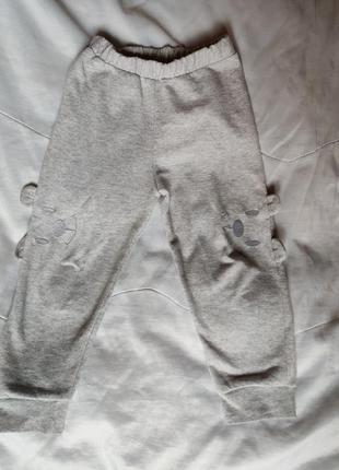 Забавные спортивные штаны, штанишки