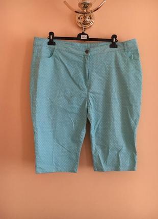 Батал большой размер стильные котоновые бриджи шорты штаны штаники брюки