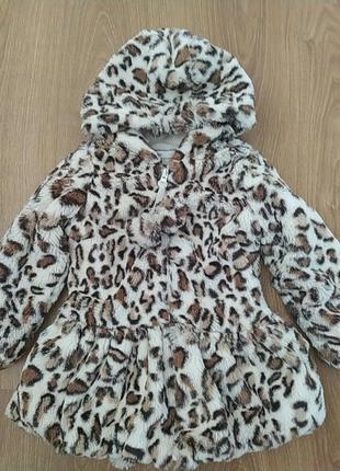 Леопардовая шубка доя модницы american widgeon